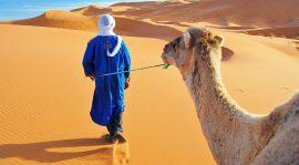 Büyük Sahra Çölü Fas Turu