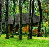 doğa tatili, yayla tatili, turizm tatil