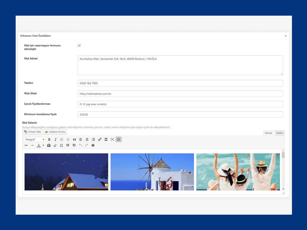 OthemesNET Turizm Tatil Responsive Yazı Ekleme